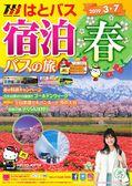 宿泊春(2019.3月-7月)